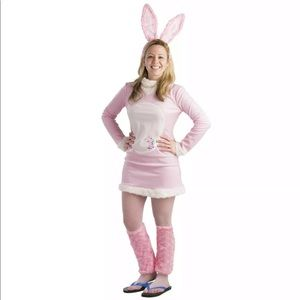 Dress Up America Women's Energizer Bunny